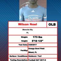 Wilson Noel