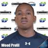 Wood Profil