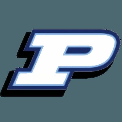 palmetto-logo-new2.png