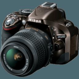 Professional Photography - Bleechr
